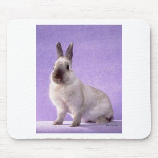 conejo tapetes de ratones