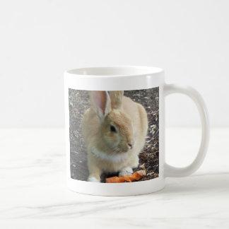 Conejo Taza De Café
