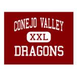 Conejo Valley - Dragons - High - Newbury Park Postcard