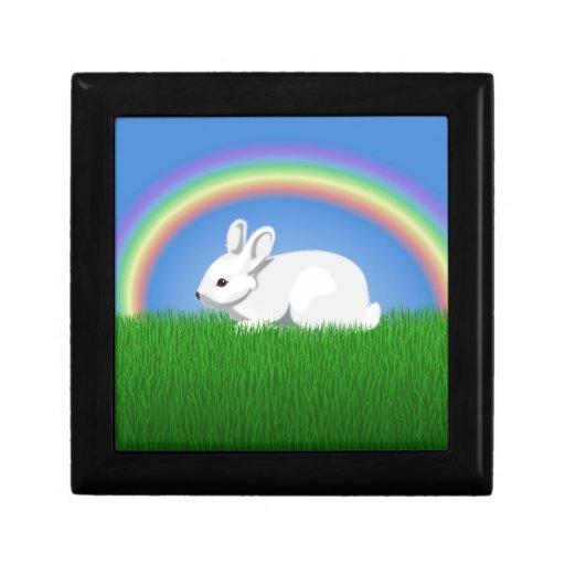 Conejo y arco iris cajas de joyas