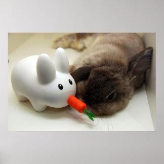 Conejo y labbit (impresión) póster