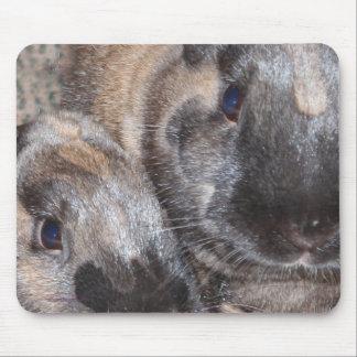 Conejos de conejito - 2 conejitos sedosos de Brown Alfombrillas De Ratón