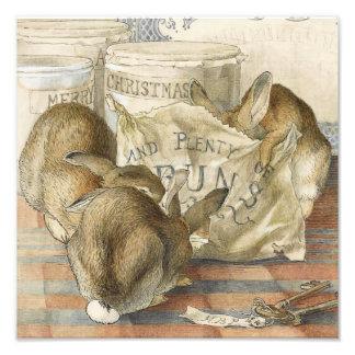 Conejos de conejito de Beatrix Potter Fotografía