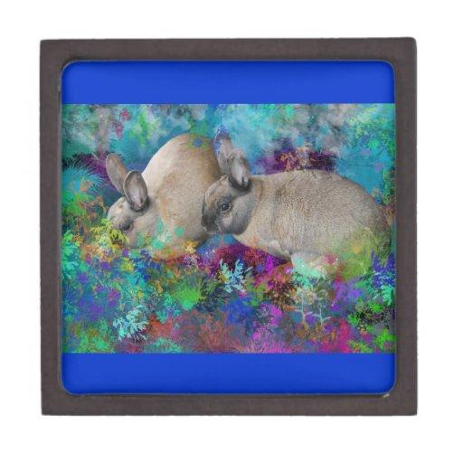 Conejos de conejito en Fantasyland: Un cuento de l Cajas De Joyas De Calidad