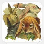 Conejos de conejito pegatina cuadrada