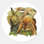 Conejos de conejito pegatina redonda