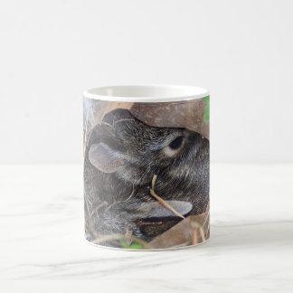 Conejos del bebé que ocultan en hojas taza mágica