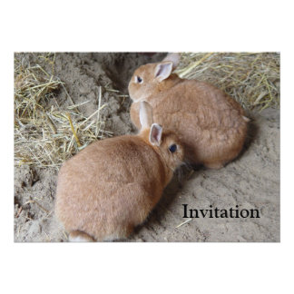 Conejos Invitación Personalizada