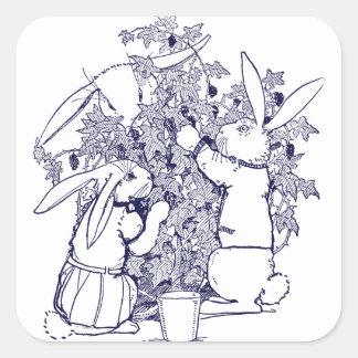Conejos que escogen las zarzamoras pegatina cuadrada