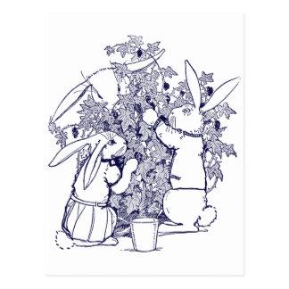 Conejos que escogen las zarzamoras tarjetas postales