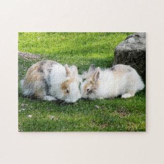 Conejos - rompecabezas