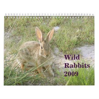 Conejos salvajes 2009 calendarios
