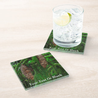 Cones And Needles Glass Coaster