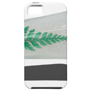 ConeShapedBathSaltsBottle070315.png iPhone SE/5/5s Case