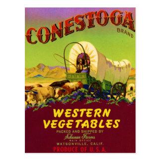 Conestoga Post Card