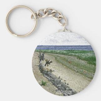 Conexión del Driftwood la playa - llavero