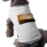 Coney Island Beach Sunset Dog T Shirt