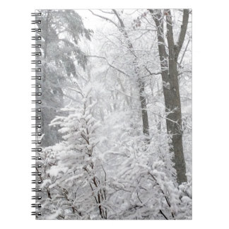 Confections in Snow --- Spiral Notebook