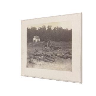 Confederate Dead after Battle of Antietam Canvas Print