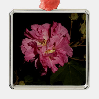 Confederate Rose Christmas Ornaments