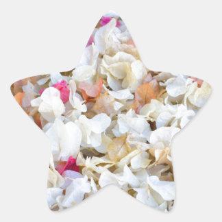 CONFETTI dried flowers Star Sticker