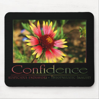 Confidence 2 mouse pad