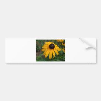 Confidence Bumper Sticker
