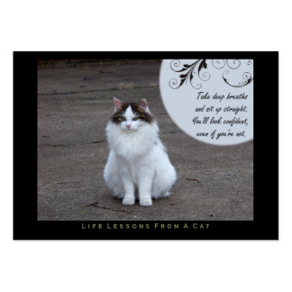 Confident Life Lessons From a Cat ACEO Art Cards Large Business Card