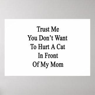 Confíe en que yo que usted no quiere dañar un gato poster