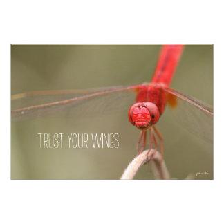 Confíe en su libélula del rojo de la cita de las cojinete