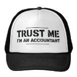 Confíeme en, yo son un contable gorra