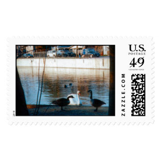 Confrontation Postage Stamps