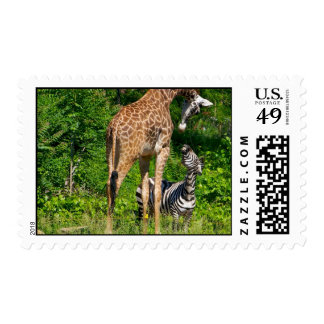 Confrontation Stamp