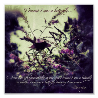 Confucius Butterfly Quote Print