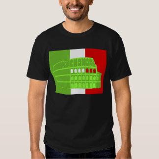 Confucius Institute in Rome T-Shirt