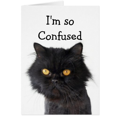 Confused Black Persian Cat Happy Birthday Card