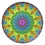 confused harmony kaleidoscope plate