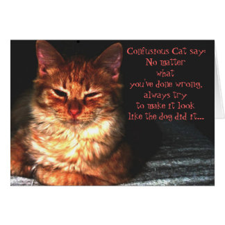 Confusious Cat say: Card