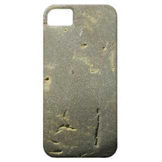 Conga - iPhone 5 - Barely There Case