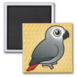 Congo African Grey 2 Inch Square Magnet