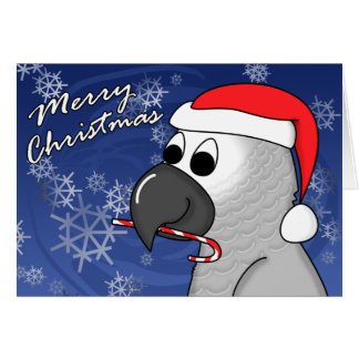 Congo African Grey Christmas Card