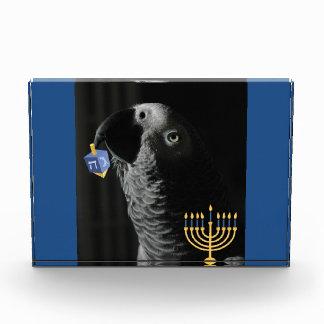 Congo African Grey Hanukkah Award