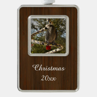 Congo African Grey on a Swing Christmas Ornament