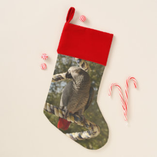 Congo African Grey on a Swing Christmas Stocking