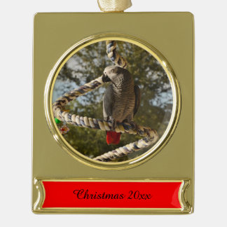 Congo African Grey on a Swing Gold Plated Banner Ornament