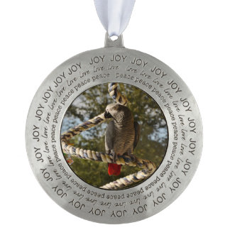Congo African Grey on a Swing Ornament
