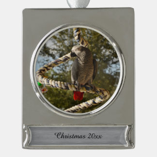 Congo African Grey on a Swing Silver Plated Banner Ornament