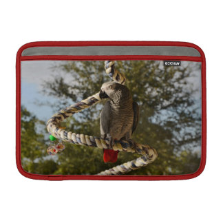 Congo African Grey on a Swing Sleeve For MacBook Air