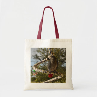Congo African Grey on a Swing Tote Bag
