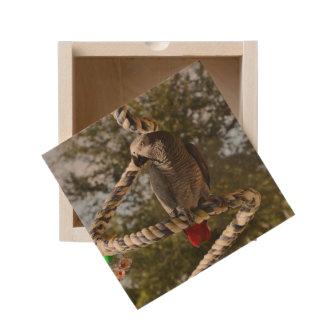 Congo African Grey on a Swing Wooden Keepsake Box